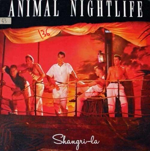 Animal Nightlife – Shangri-La