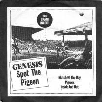 Genesis - Spot the Pigeon